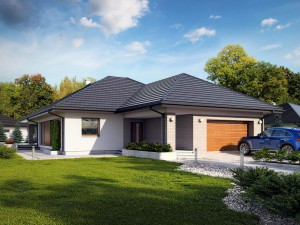 Projekt domu Della