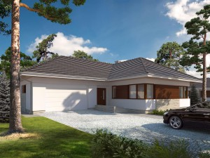 Projekt domu Driada 5