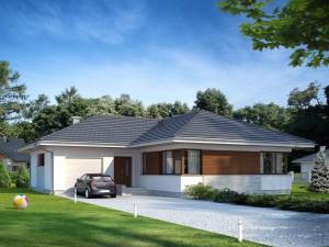Projekt domu Driada