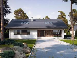 Projekt domu Endo 3
