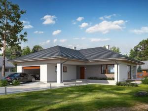 Projekt domu Ergo